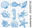 Sea collection. Original hand drawn illustration in vintage style - stock photo