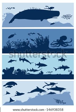 Sea life aquarium, vector - stock vector