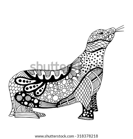 Sea lion illustration on simple white background  - stock vector