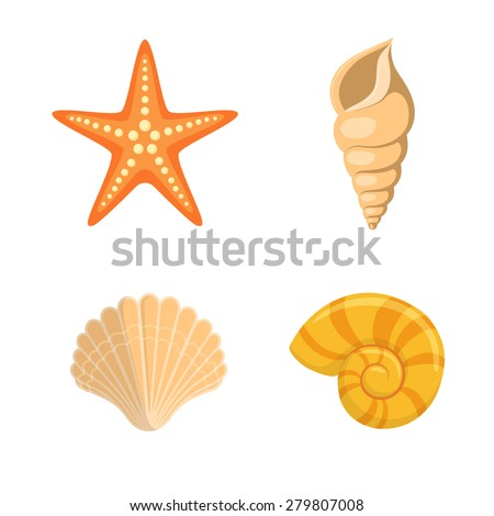 Sea shells symbols collection.  - stock vector