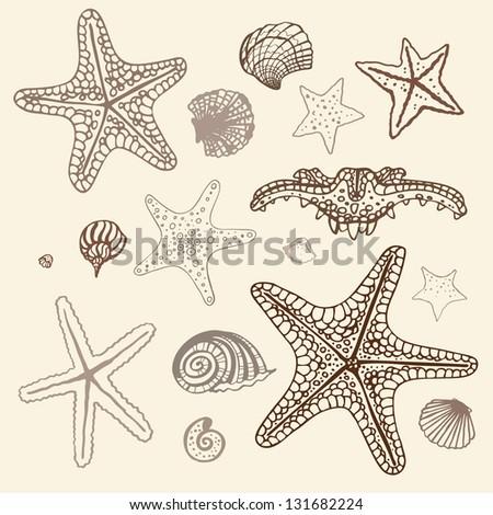 Sea Starfish collection. Hand drawn vector illustration. - stock vector