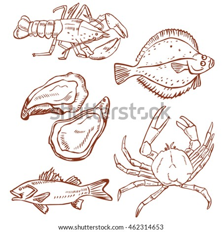 seafood drawing set