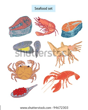 seafood set hand-drawn illustrations