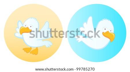 Seagull - stock vector