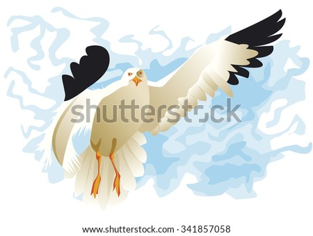 seagull flying front with big wings - stock vector