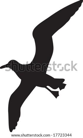 seagull, vector - stock vector
