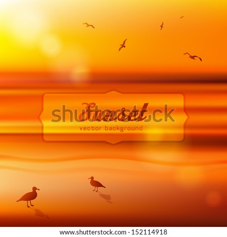 Seagulls at sunset. Background illustration. Vector EPS 10. - stock vector
