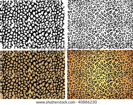 seamless animal pattern skin fur vector leopard set collection