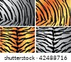 Seamless animal pattern skin fur vector tiger pack - stock vector