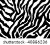 seamless animal pattern skin fur vector zebra - XXL version in jpeg available in my portfolio - stock vector