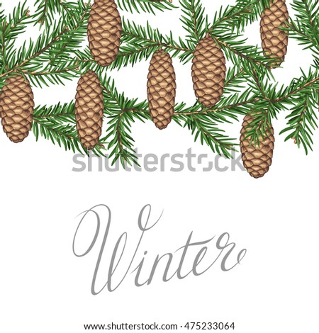 Seamless border with fir branches and cones. Detailed vintage illustration.