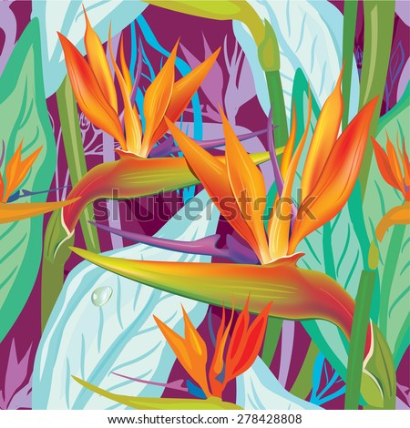 Seamless floral pattern with Strelitzia - stock vector