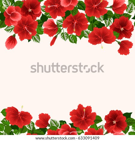 Seamless Gorgeous Border In Tropical Flowers Of Red Hibiscus Floral Exotic Background For Design