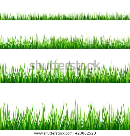 Seamless green grass field. Grass pattern isolated on white background. Collection of different scaled front plants. Vector illustration EPS10 - stock vector