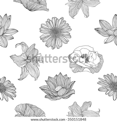 Seamless linear floral pattern - chamomile, poppy, lotus, royal lily - stock vector