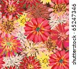 Seamless ornate floral pattern with herberas - stock photo