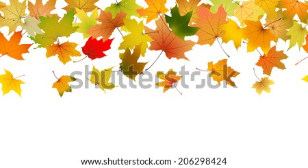 Seamless pattern of autumn leaves, falling down, vector illustration.
