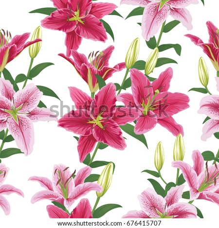 lily flower stock images, royaltyfree images  vectors  shutterstock, Beautiful flower