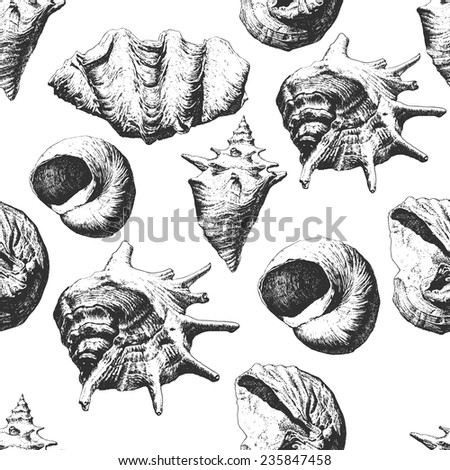 Seamless pattern with different shells on a white background - stock vector