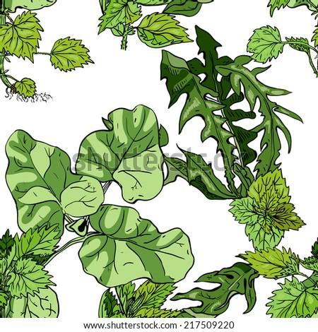 Seamless pattern with herbs: burdock, nettle, dandelion - stock vector