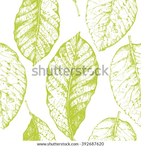 Tobacco-leaf Stock Images, Royalty-Free Images & Vectors ...
