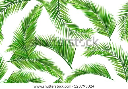 seamless repeat coconut leaves - stock vector