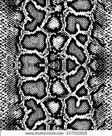 snake print stock images  royalty free images   vectors Cheetah Print Stencil Cheetah Fur Vector Art