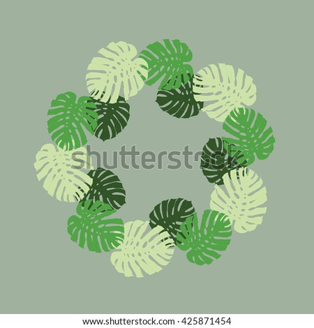seamless texture with tropical plants. Monstera adansonii
