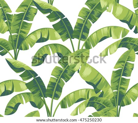 Seamless Tropical Pattern With Banana Leaves Vector Illustration