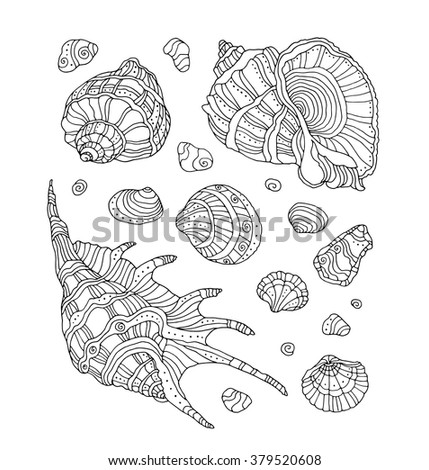Seashell set collection. Vector illustration. Zentangle. Coloring book page for adult. Hand drawn artwork. Beach concept for restaurant menu card, ticket, branding, logo label. Black, white - stock vector