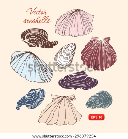 Seashells vector set. Collection of different isolated shells - stock vector