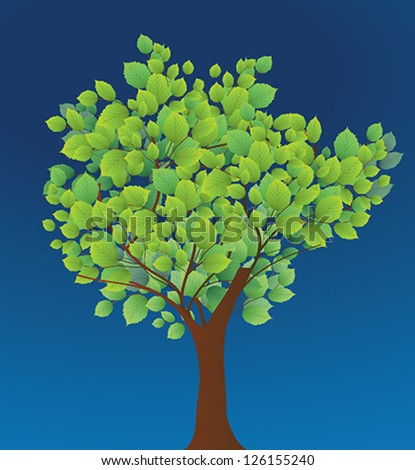 Season tree with green leaves - stock vector