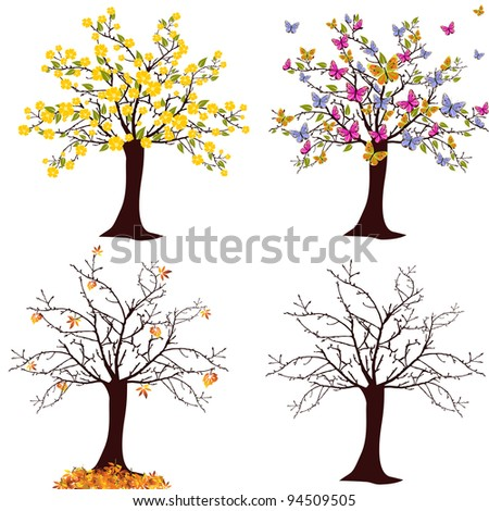 Seasonal trees - vector