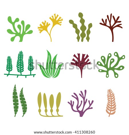 Seaweed icons set - nature, food trends concept  - stock vector