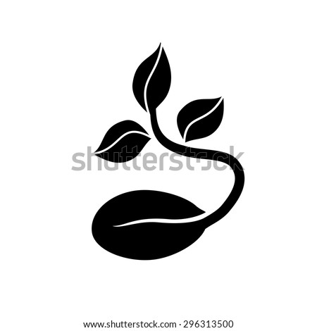 Seed Stock Images Royalty Free Images Amp Vectors