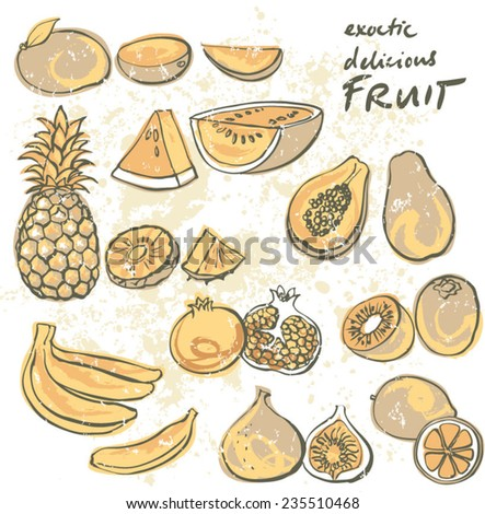 Selection tropical fruit vector set grunge background