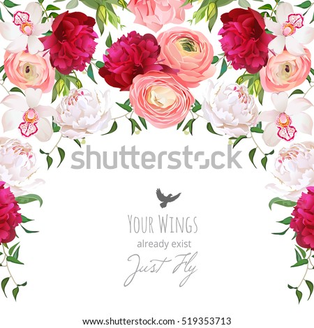 Ranunculus Stock Images, Royalty-Free Images & Vectors ...