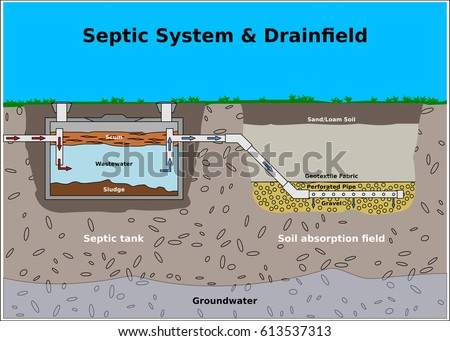 Septic tank stock images royalty free images vectors for Sewer system diagram