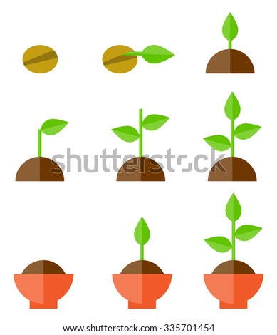 Sequence of seed germination on soil, evolution concept  - stock vector