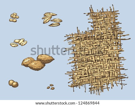 Series of vector illustrations of archaeological finds from the excavations of ancient human habitat. The remains of line; stone plums, cherries and apples; seeds of wheat, barley and millet - stock vector