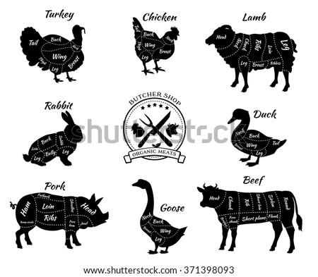 Canada Goose' authentic pork