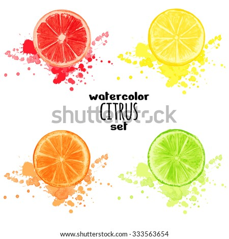 Set citrus with splashes isolated on white background. Watercolor vector illustration for decorative poster, emblem natural product, market, packaging design of cosmetics and food. Global color used. - stock vector