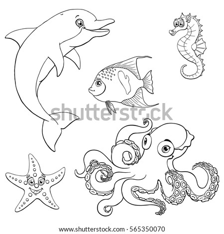 spineless stock images royalty free images vectors