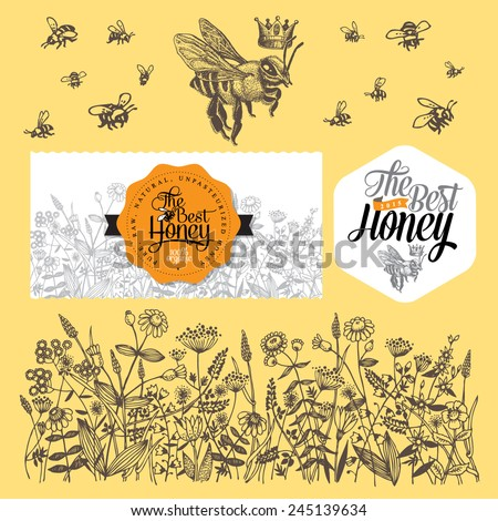 Set for honey and bee labels. Hand drawn illustrations. Vector Illustration. - stock vector