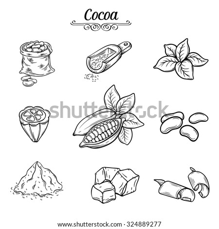 set hand draw decorative cocoa chocolate, black line