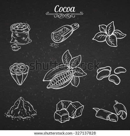 set hand draw decorative cocoa chocolate, vector illustration