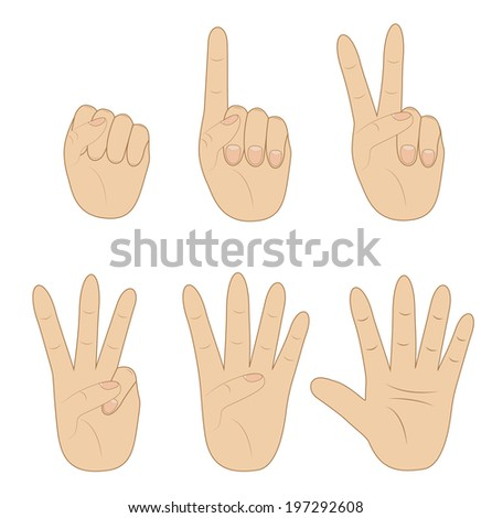 set hand, showing different number on white background, vector illustration
