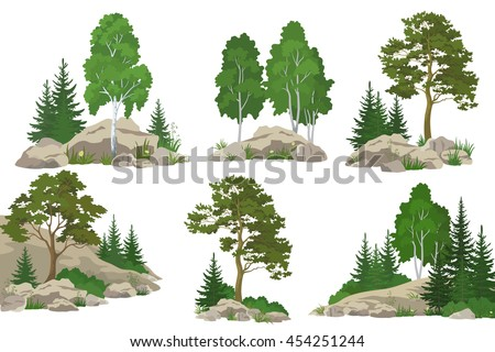 Set Landscapes, Coniferous and Deciduous Trees, Pine, Fir Tree, Birch, Flowers and Grass on the Rocks, Isolated on White Background. Vector - stock vector