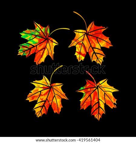 Set Multicolored maple leaf. Vector - stock vector