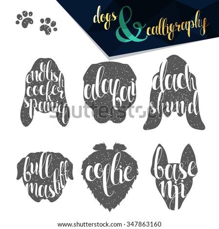 Set names dog breeds in calligraphy handmade design.  Elite premium labels. Create retro and vintage  posters, brochures, postcards. - stock vector